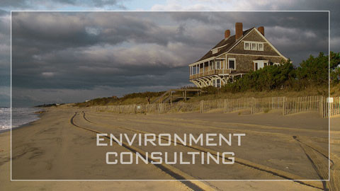 Firstcoastal Environment Consulting Link